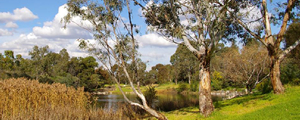 Darebin Parklands's Image